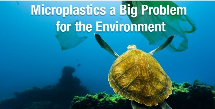 Microplastics a Big Problem! -
