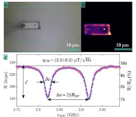 使用Qnami ProteusQ成像BiFeO3中的抗鐵磁旋轉環體 Imaging antiferromagnetic spin cycloids in bismuth ferrite(BiFeO3) - antiferromagnets, multiferroics, weak ferromagnets